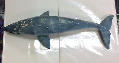 12  Gray Whale By Safari Ltd  1991 Monterey Bay Aquarium