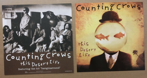 COUNTING CROWS Rare 1999 DOUBLE SIDED PROMO POSTER FLAT for Desert CD MINT 12x12