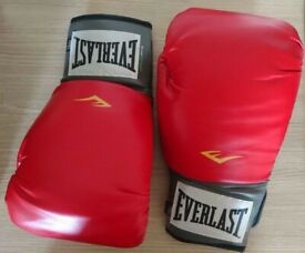 Everlast Red Pro Style 16 oz Boxing Training Gloves Level 1 + 2 Pairs Wraps