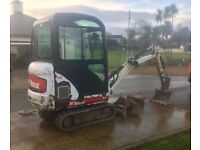 Bobcat mini digger, asu dumper and ivor Williams plant trailer