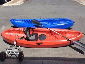 Kayaks x 2 Wishart Brisbane South East Preview