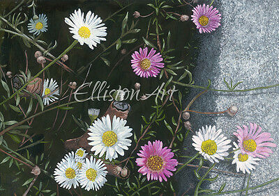 Flowers Daisies Floral Painting Giclee Print Wall Art Medium A3 Nature Gardens