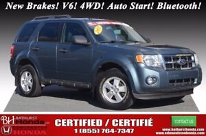 2012 Ford Escape XLT - 4WD New Brakes! V6! 4WD! Auto Start! Blue