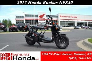 2017 Honda Ruckus NPS50 Great on Fuel! Low Maintenance!