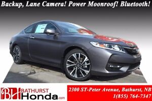 2017 Honda Accord Coupe EX LED Lights! Backup & Lane Camera! Pus