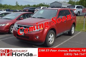 2010 Ford Escape XLT LOW PRICE! 4WD! Leather! Heated Seats! Powe