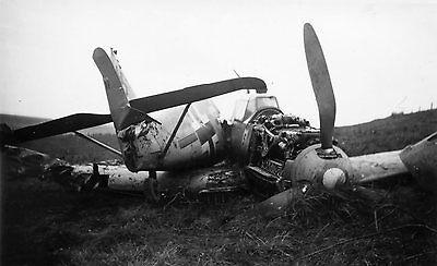 WW2 Photo WWII  German Luftwaffe Bf 109 Russia 1943 World War Two 6139