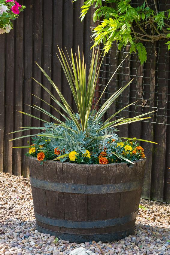 Creative ways to use half barrels ebay for Wooden barrel planter ideas