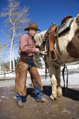 The Complete Guide to Properly Cinching a Saddle