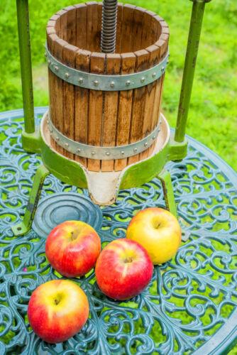 Ratgeber für den Kauf von Obstpressen und Musern für den professionellen Obstanbau