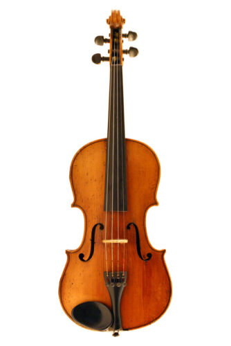 A Beginner's Guide to Buying a Violin