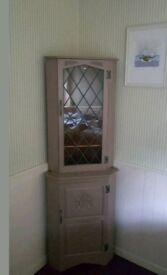 Vintage corner cabinet/drinks cabinet