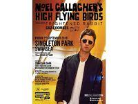 Swansea Singleton Park Noel Gallagher ticket