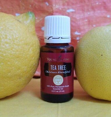 Sale  Young Living Tea Tree  Melaleuca Alternifolia  Essential Oil  Fresh Batch