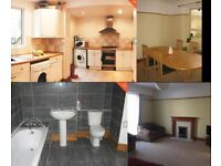 1 Bedroom Available in 4 Bedroom Student House (48 week contract)