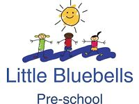 Pre-school/Nursery Managers and Practitioners