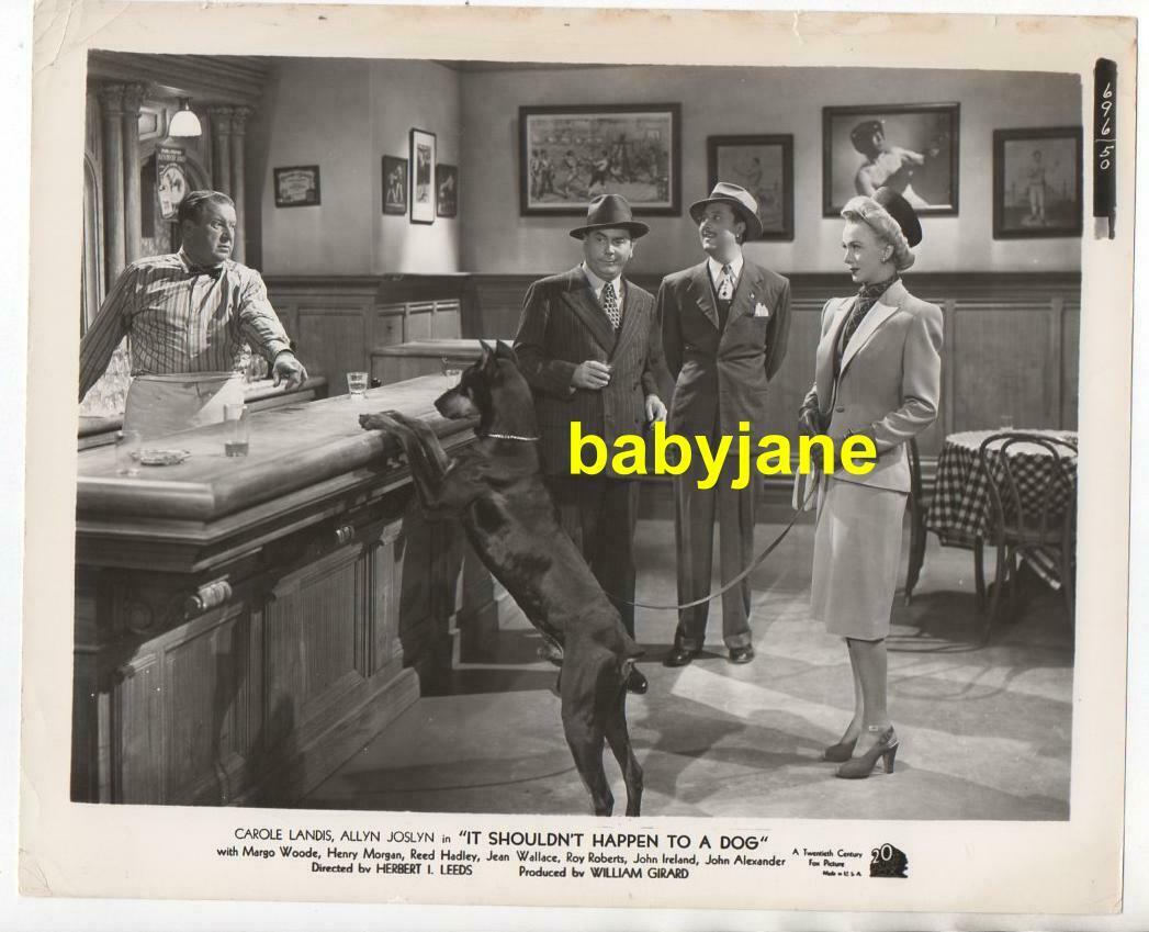 CAROLE LANDIS & DOBERMAN ORIGINAL 8X10 PHOTO 1946 IT SHOULDN'T HAPPEN TO A DOG