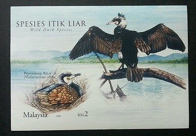 Wild Duck Species Malaysia 2006 Birds Animal Pond Fauna (ms) MNH *imperf (Duck Species)