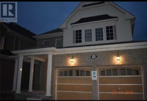 4Beds, 3wash  Brand New House for Rent