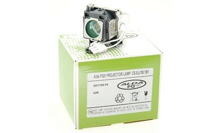 Lámpara para Proyectores 5J.J1S01.001 Benq MP610 MP620 MP620P W100 MP610-B5A