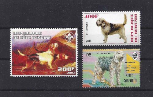 Dog Art Body Portrait Postage Stamp Collection OTTERHOUND OTTER HOUND 3 x MNH