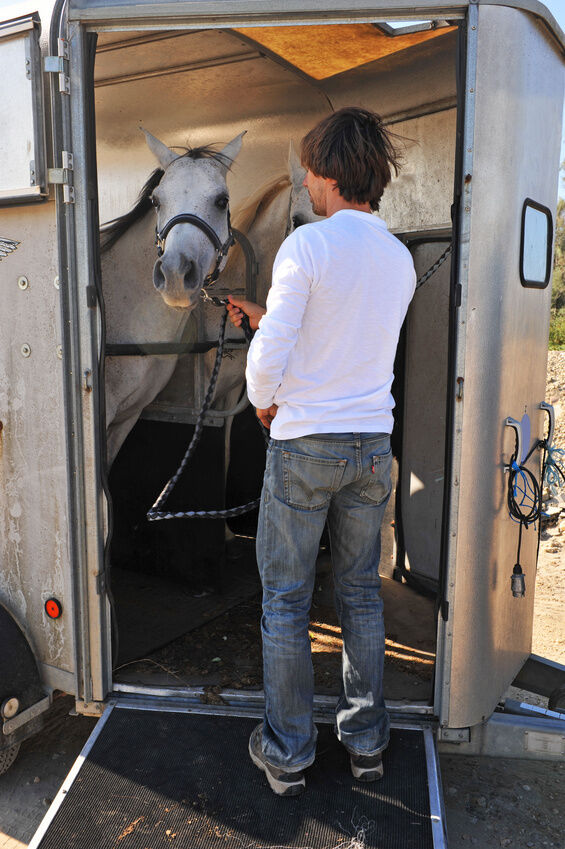 How to Choose the Right Two Horse Trailer