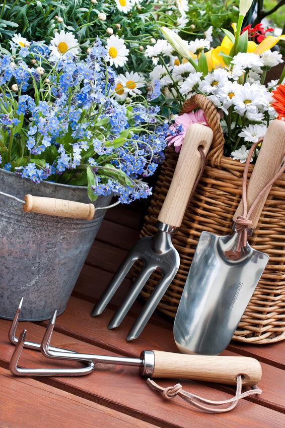 3 tipps wie sie mit eimern garten und terrasse dekorieren for Terrasse dekorieren