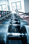 Everything You Need for Weight Training