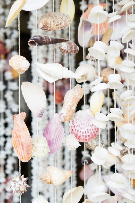 5 inspiring seashell craft ideas ebay for Sea shell craft ideas