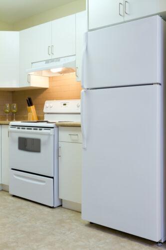 Hochwertige Kühlgeräte von Gorenje im eleganten Design