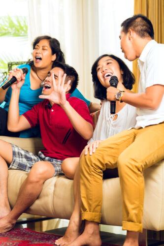 Karaoke und alles, was dazu gehört