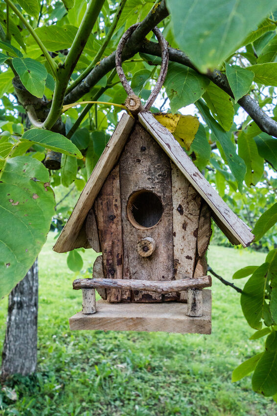 How to make a simple homemade bird feeder ebay for Simple birdhouse