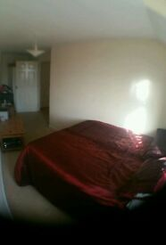 Room to rent double on size single in price !