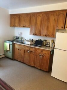 Large Bachelor Apartment $650