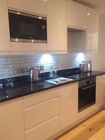 Whole 1 bedroom apartment for 2-4 month rent in Sutton