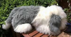 English Sheepdog Soft Stuffed Dog Animal Toy Golden Grove Tea Tree Gully Area Preview