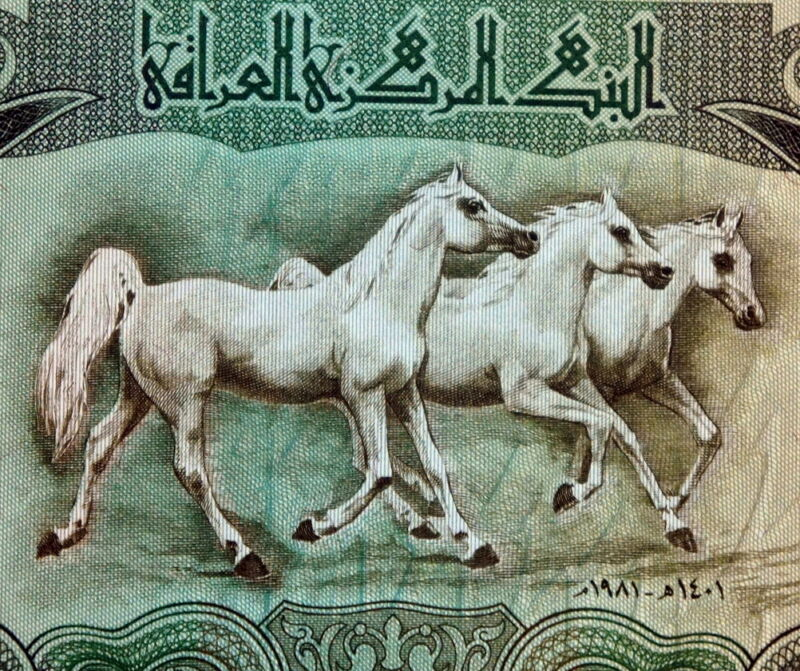 HORSES ON MONEY 1982 IRAQ 25 DINAR BANKNOTE Large Size Authentic Uncirculated