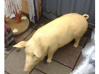Quirky Life Size Pig/ideal shop prop/home/garden/film prop