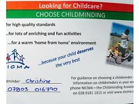 Registered childminder in bangor with availability over the summer holidays and into the school term