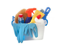 Professional domestic cleaning