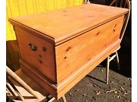pine trunk, solid and robust storage or seated area