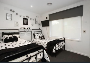 Black steel beds Gladstone Park Hume Area Preview