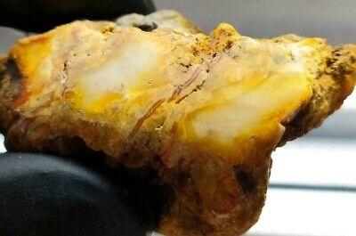 Amber Yellow White raw Baltic stones Pendant 17.7gr Royal Aquarium Necklace Matt