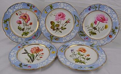 Incredibly Rare c1820 Spode Botanical Set 5 Plates Enameled Flowers Handkerchief