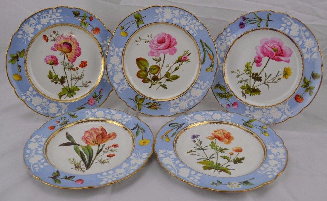 Incredibly Rare c1820 Spode Botanical Set 5 Plates Enameled Flowers Handkerchief
