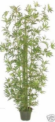 8' Artificial Silk Bamboo Palm Tree In Pot Arrangement Plant Floral Topiary Ivy