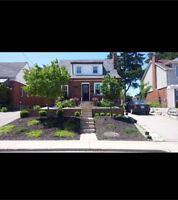 Spring Clean Ups/Yard Cleanups/Lawn Services/Gardening/Sod