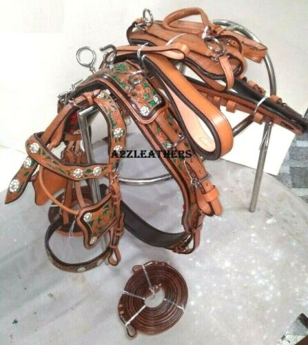 Stylish 3 tone Leather Driving harness for single horse cart-Natural/green/brown