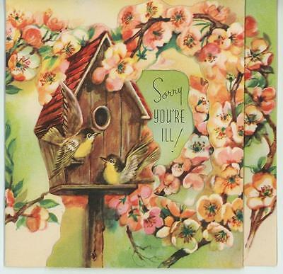 VINTAGE WARBLER BIRD YELLOW BREASTED BIRD HOUSE APPLE BLOSSOMS CARD ART PRINT