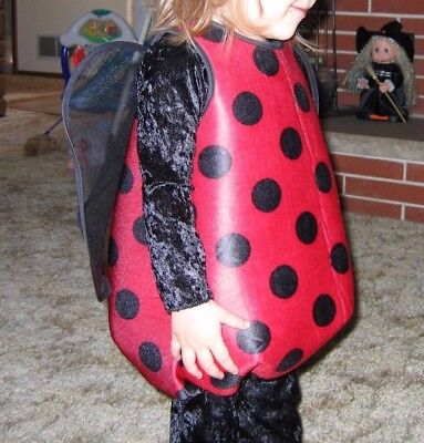 ADORABLE Halloween LADYBUG Costume, Great condition. Age 1-2 years / 12-24 month](2 Month Halloween Costume)